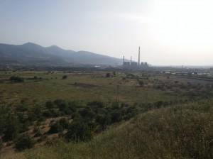 Yırca'da kesilen zeytinlikler ve Soma termik santrali